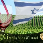 wines from israel