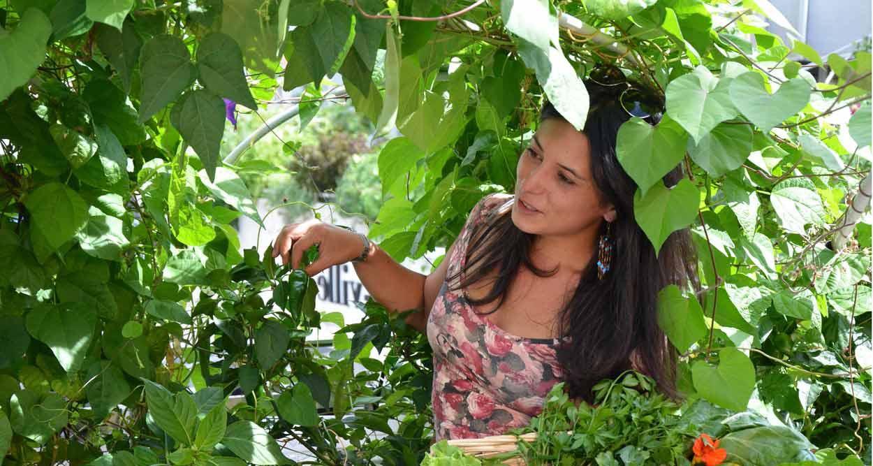 sous les fraises grenoble hanging gardens