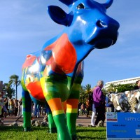 cow parade transhumance cannes
