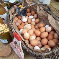 21eme marché de la truffe jacques chibois