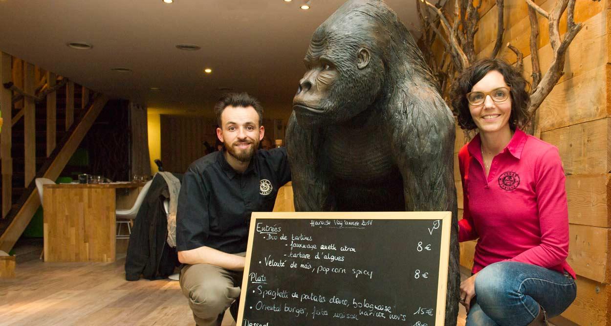 vegan gorilla nice