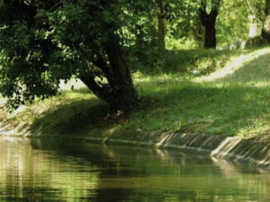 canal siagne jardins