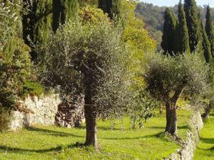 domaine royrie parfum grasse
