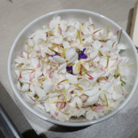 confiserie florian gourmandise