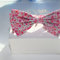 bold bow noeud papillon