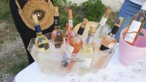 btoev consulting passion oenologie vigne terroir