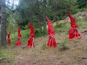arboretum roure feerie art arbres