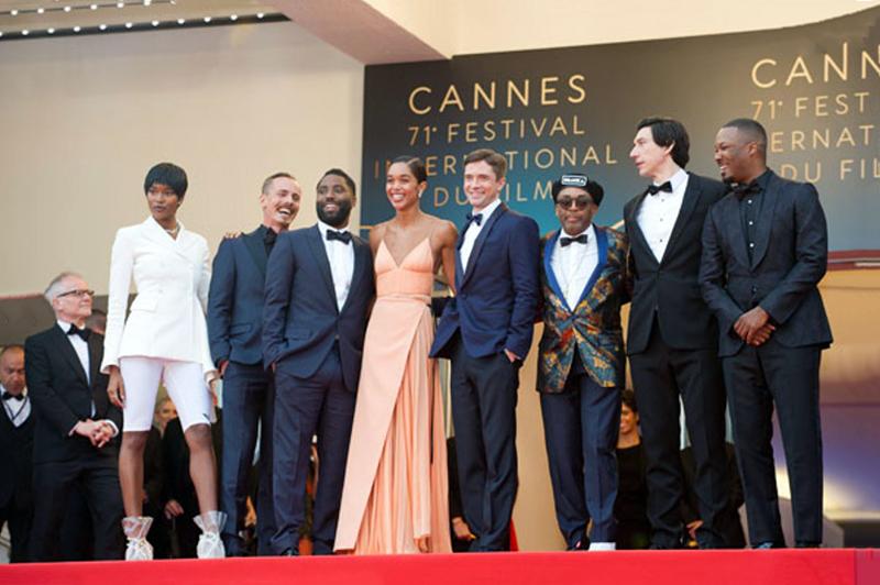 festival cannes films palme or