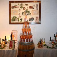 rire vignes olivia moore château saint martin